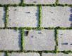 Foto: 182209, ohneski Quelle: Photocase.com